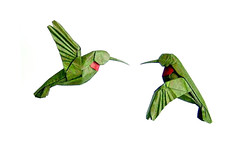 Ruby-Throated Hummingbirds (Lang) (cavemanboon*) Tags: singapore origami malaysia boon robertlang  rubythroatedhummingbirds cavemanboon