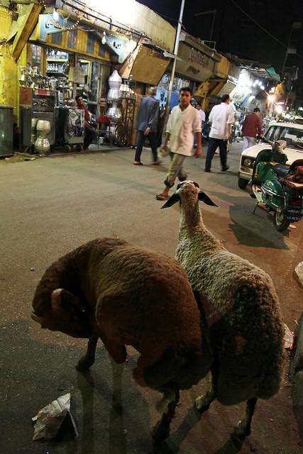 エジプト、カイロ、夜の路地