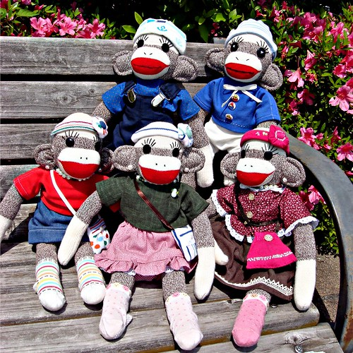 A group sock monkey portrait