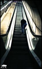 ..... (hezur) Tags: film 35mm underground photography photo lomo lca foto metro bilbao metrobilbao zb fotografia bizkaia bilbo torres hezur argazkiak hodei argazkilaritza wwwhezurcom