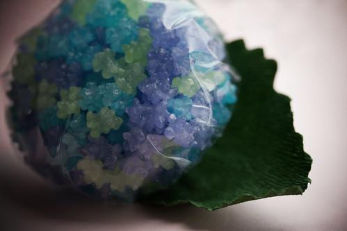 1875 : Sweet Hydrangea :)