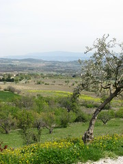 french countryside (jenchap) Tags: travel france provence gordes perchedvillage