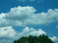 clouds (jlewin) Tags: white clouds bluesky whiteclouds fluffyclouds cottonwhite