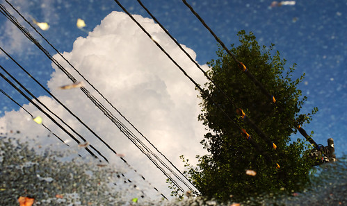 Tras la lluvia…