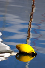 Lemon aid (A Different Perspective) Tags: winter newzealand reflection beach water yellow harbour chain wellington buoy orientalbay buoyant adp:posted=2008