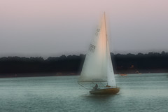 Sailing home (MNesterpics) Tags: sunset water sailboat photoshop virginia boat sailing va 2008 thebest alexandriava supershot bellhavenmarina