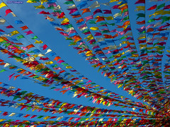 Bandeirinhas - Little Flags (rbpdesigner) Tags: blue party brazil sky southamerica colors azul brasil america cores se amrica br minolta flags cu mercado getty a1 blau festa onsale dimage decorao gettyimages aracaju brsil imagebank sojoo bandeiras onblue amricadosul enfeite festajunina sergipe minoltadimagea1 folclore tradio amriquedusud bandeirinhas amricadelsur sdamerika  bancodeimagens  repblicafederativadobrasil anawesomeshot colorphotoaward americameridionale venda gneyamerika mercadothalesferraz mercadoantniofranco colourmania bandeirinhascoloridas