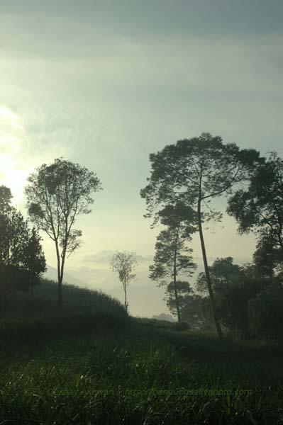 morning in bandung 1