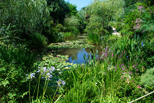 Monet Garden 01