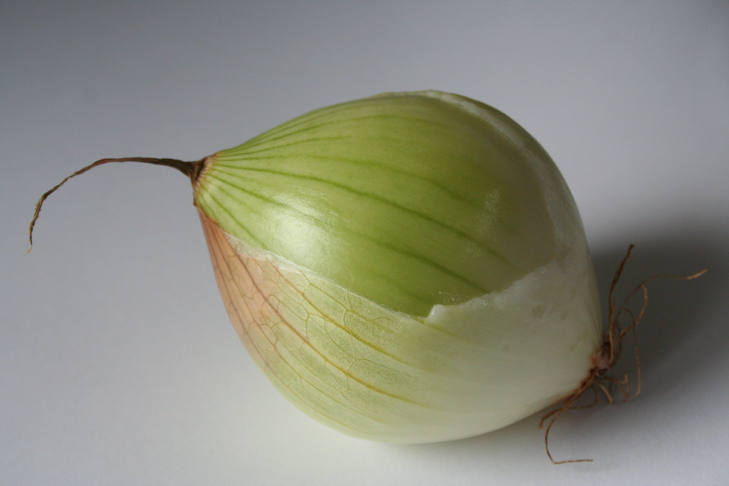 onion minus fairy wing