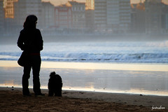 Gijn (fertraban) Tags: contraluz gijn asturias playa perro sanlorenzo asturies xixn ltytr2 ltytr1