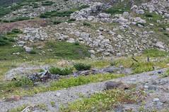 十勝岳スキー場の残骸