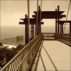 The Bridge and the Pier @ Scripps ~ (Dom Guillochon) Tags: ocean california bridge trees usa beach lines architecture pier waves shadows unitedstates sandiego beachlife lajolla research modernarchitecture ucsd californiacoast scrippspier supershot lajollascrippsinstitutionofoceanography pacificoceanresearch thebridgeatscrippsinstitutionofoceanographyinlajolla carsgounderthisbridge thisisapedestrianbridge