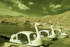 Swan Boats on Banks of Lake Kawaguchi (aeschylus18917) Tags: infrared japan yamanashi kawaguchilake nature boat swan swanboat kawaguchiko nikon d70 danielruyle aeschylus18917 danruyle druyle 赤外線 ir landscape scenery surreal nikond70 sky tree ダニエルルール ダニエル ルール infra red mountfuji 富士山 fujisan yamanashiprefecture 山梨県 yamanashiken lake mountain 1870mmf3545gifdx nikkor1870f3545g nikkor1870f3545gdx boats 日本 1870mm 1870f3545g nikkor 1870 f3545g pxi pxt