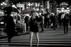 night crossing (tokyololas) Tags: street city people urban japan night tokyo women crossing candid  roppongi  umbrellas canonef50mmf14usm japanesewomen canon40d tokyololas umbrellasofjapan