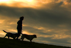 Walking the dogs (Steve-h) Tags: ireland sky dublin woman brown white green dogs grass clouds bravo silhouettes finepix fujifilm iloveit steveh codublin abigfave platinumphoto aplusphoto flickraward favemegroup4 favemegroup7 platinumheartaward theperfectphotographer flickrestrellas ilovemypics spiritofphotography multimegashot s100fs favemoifrance goldenart phvalue hillabovetheriverdoddervalley mygearandme mygearandmepremium mygearandmebronze mygearandmesilver mygearandmegold mygearandmeplatinum mygearandmediamond