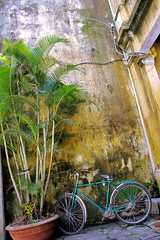 Bike On A Wall (cwgoodroe) Tags: food art me beer river pig town october war asia village market an vietnam southeast hoi tailors danang checkens bambohats