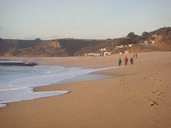 MartinsBeach_2007-240 (Martins Beach, California, United States) Photo