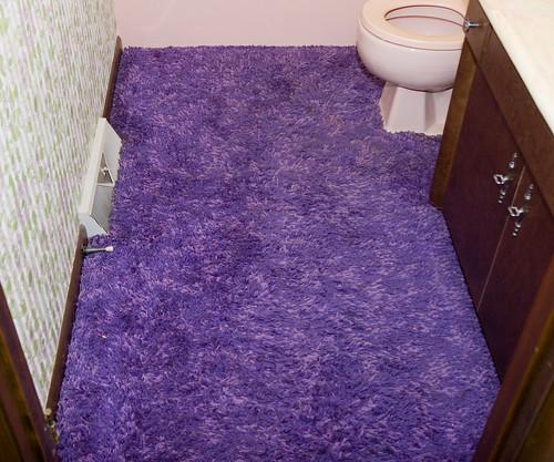 Last Minutes of the Purple Shag
