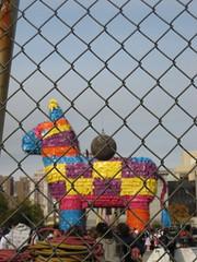 Giant Piñata