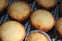 caramel cupcake (by floreksa)