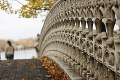 Central Park - Repititititition (My Standard Break From Life) Tags: park nyc bridge autumn newyork detail fall leaves footbridge walk centralpark manhattan architectural handrail repeat repitition ballustrade ballust