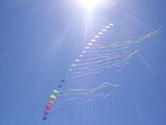 nuevo record en argentina, tren de 22 rombos comandado por 2 hilos made in ROSARIO !!! (Ale Bisaro) Tags: kite del fiesta ale viento rosario vicente lopez bisaro cometa papalote vuela barrilete rosariovuela alebisaro22 alebisaro