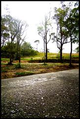 Luz (Kevin Vsquez) Tags: mountains del libertad lluvia venezuela paisaje cerro andes cristo montaas municipio tachira capacho visitatachira