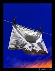 Shorts (raulmahon) Tags: blue light shirtless jockstrap sky white blanco fashion azul clouds underwear moda lingerie cielo boxer slip shorts ropa pinzas tendida tendedero calzoncillos ralgonzlez oltusfotos raulmahon