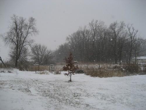*snow*