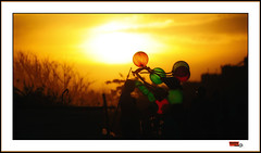 The Baloon man (bhagath makka) Tags: sunset man studio baloon chennai tamil nadu makka elliots karthick bhagathkumar makkaphotography bhagathkumarkarthickmakkaphotographydeepthibalajidiwa