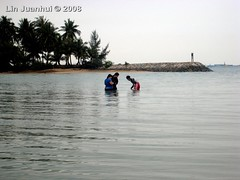 IMG_4123 intertidal wading