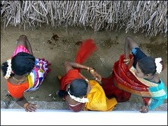 (balaphoto) Tags: transgender villupuram aravani koovagam balaphoto marakkanambala