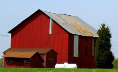 3 sheds & propane tank