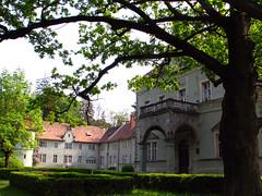 Castle yard (K_Liff) Tags: tree green castle spring mukachevo zakarpattia