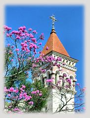 Cornlio Procpio, Cristo rei. (Mauricio Portelinha) Tags: church torre kirche chiesa igreja glise kerk ipe cornelio parquia cristorei cornelioprocopio