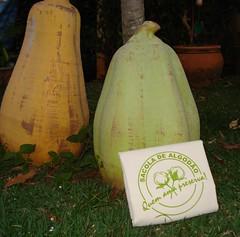 Sacola de Algodo (marisa zig zag) Tags: bolsa algodo sacola saquinhos