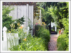Provincetown alley (h_roach) Tags: flowers garden path provincetown capecod massachusetts mywinners picketfince platinumphoto theperfectphotographer