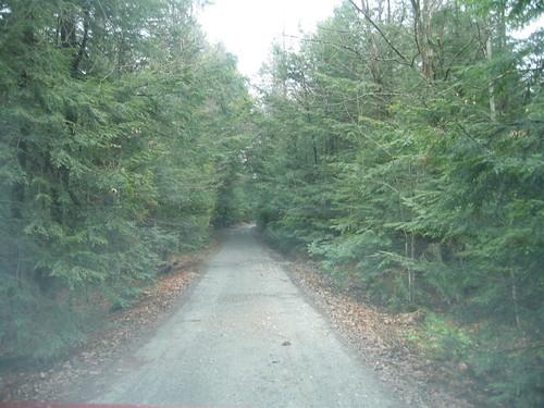 The narrow trail less traveled