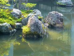 Stones in pond