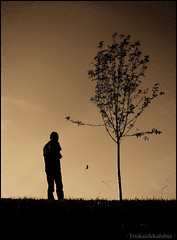A man, a bird, a tree [version 1] (Triskaidekafobia) Tags: barcelona sky man tree bird home sepia arbol cel olympus cielo pajaro edu arbre hombre virado ocell e420 parccervantes