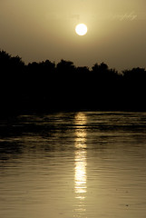 !    (Tikke Sang) Tags: sunset iran   isfahan  zayanderoud      vahidghoroobinjamagebade