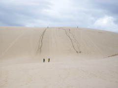 Sandboarding, New Zealand (- MattW -) Tags: newzealand travelling sand sandboarding backpacking sanddunes