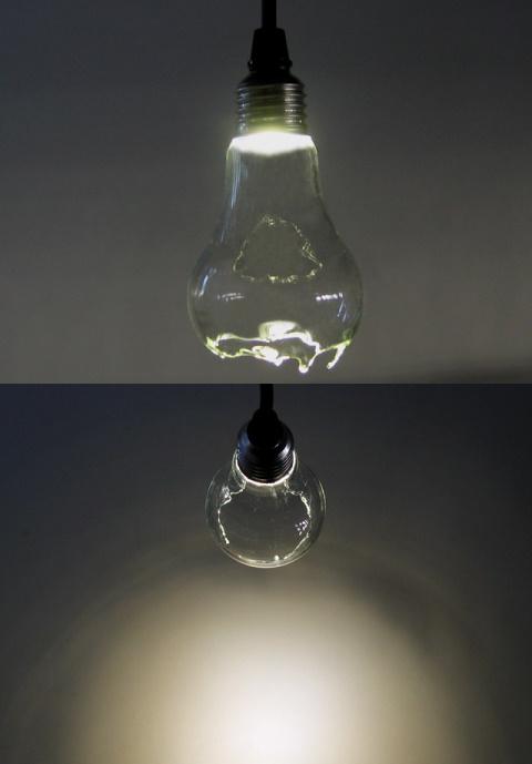 Ceci bulb