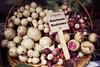 Organic Heirloom Radishes (nathascha) Tags: pentax farmersmarket ottawa walkabout sigma30mmf14 k100d nathascha afterbrunchwalkaround norainbutthehumiditymadeitreallymuggy heirloomradishes