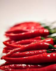 Hot Red (s@mar) Tags: red hot pepper chilli