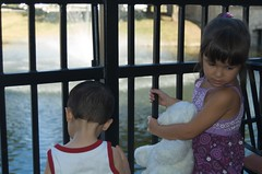 Checking out the ducks