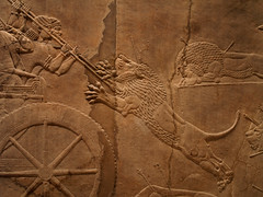 Assyrian Relief Carving - Men Spearing Lion (Radicaladam) Tags: old uk england london art history stone museum ancient britain lion relief britishmuseum carvings mesopotamia lionhunt assyria artefacts assyrian