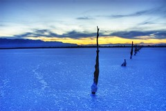 A Whiter Shade of Pale (stager57) Tags: wood blue clouds utah decay greatsaltlake posts gsl thebluehour artcafe blueribbonwinner bluestblue stansburyisland flickrsbest fineartphotos platinumphoto anawesomeshot brillianteyejewel theenchantedcarousel artcafedomidoexhibitionscomein