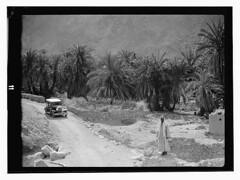 1925-1946 sinai (tummaleh) Tags: pictures old countries arab     ilamic